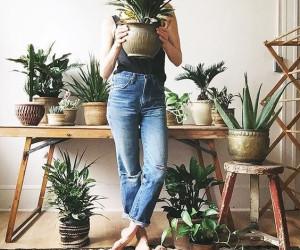 DIY: meer groen in huis!