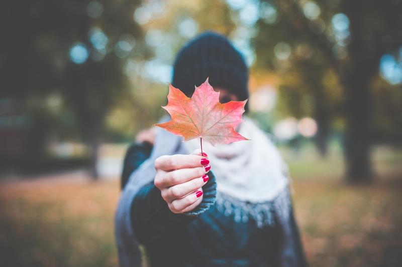 herfst-pixabay